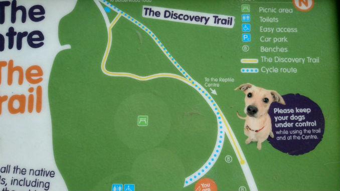 New-Forest-Reptile-Centre-Discovery-Trail-Map